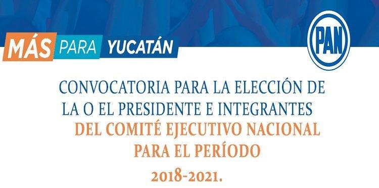 CONVOCATORIA PARA LA ELECCIÓN DE LA O EL PRESIDENTE E INTEGRANTES DEL COMITÉ EJECUTIVO NACIONAL PARA EL PERÍODO 2018-2021.